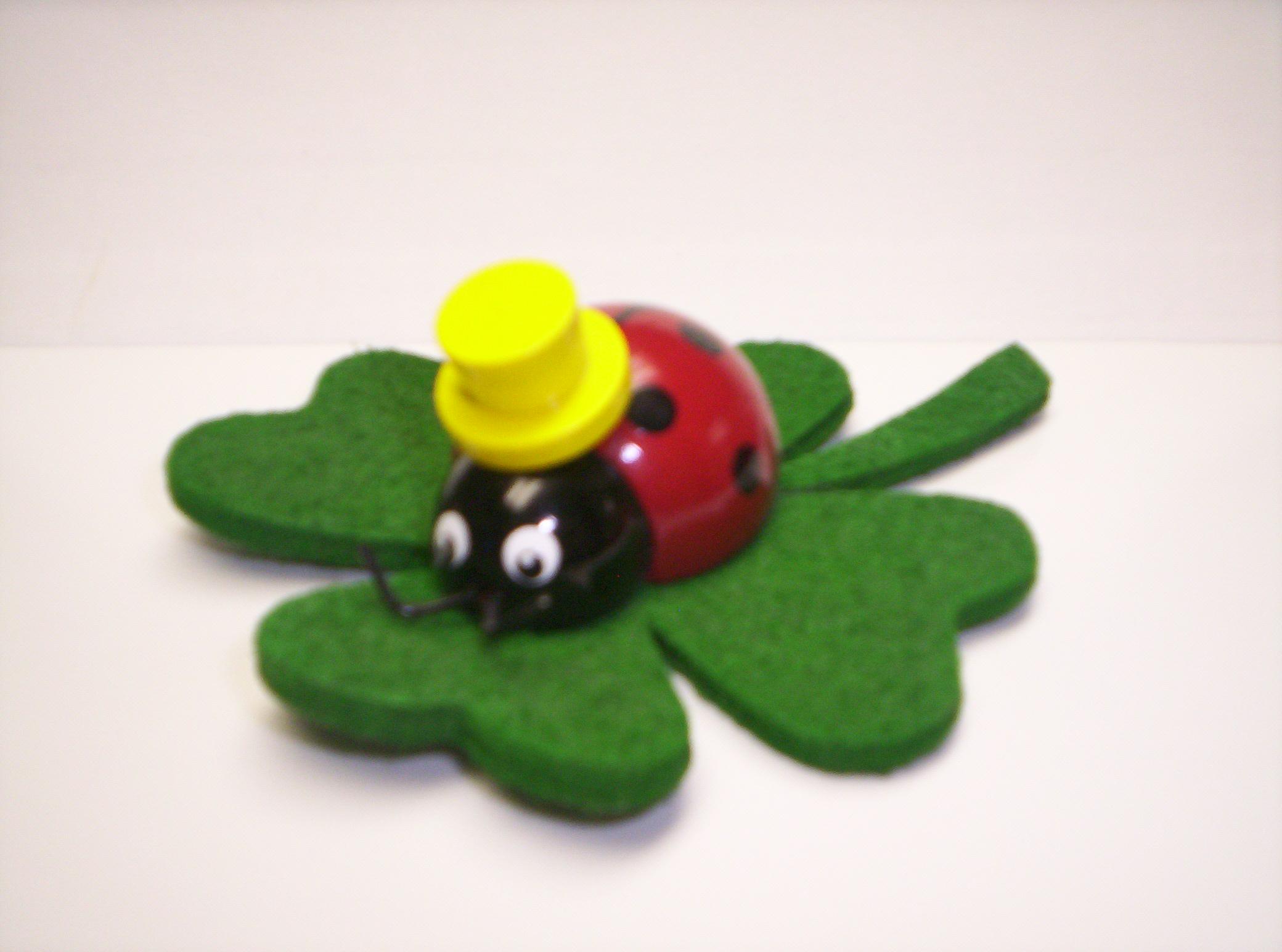 z497 Lucky Lady Bug
